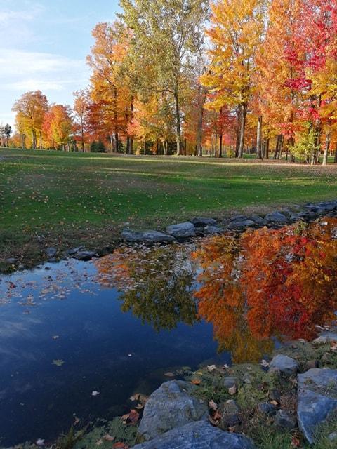 Tarifs d'automne #2 (Du 21 octobre à la fermeture)